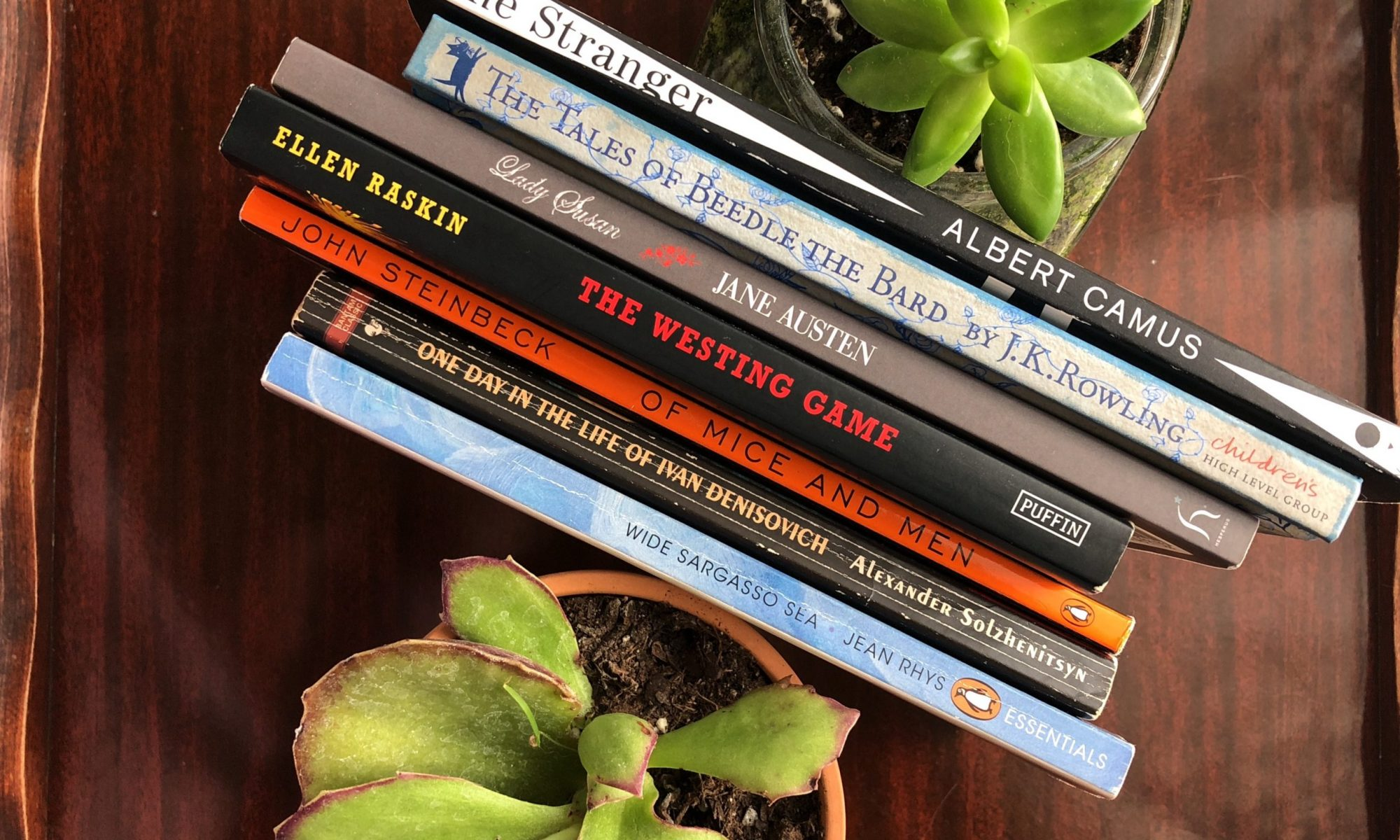 succulent plants with books in between them on a table